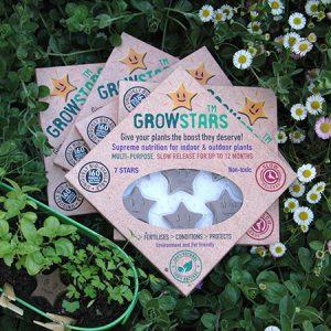 GROlife Growstars