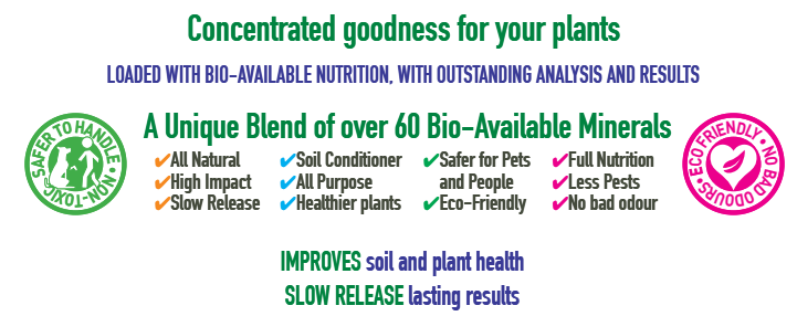 GrowStars, Product Promo